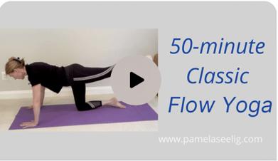 Pam Seelig_50 min class_may 18_b